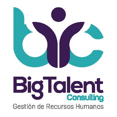 bigtalentconsulting